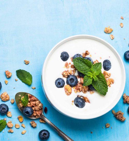 yaourt-myrtille-bio