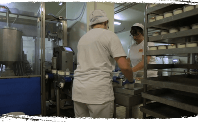 Conditionnement des yaourts bio