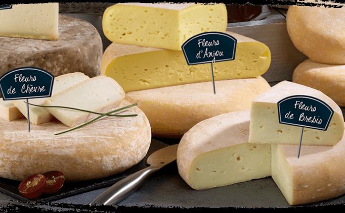 Fleurs - fromages affinés bio