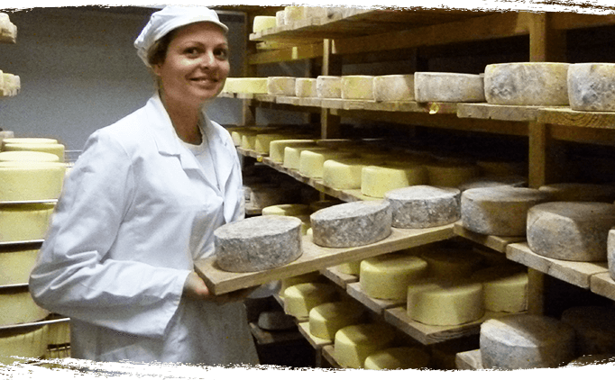 Marie Gaborit - Cave à fromage