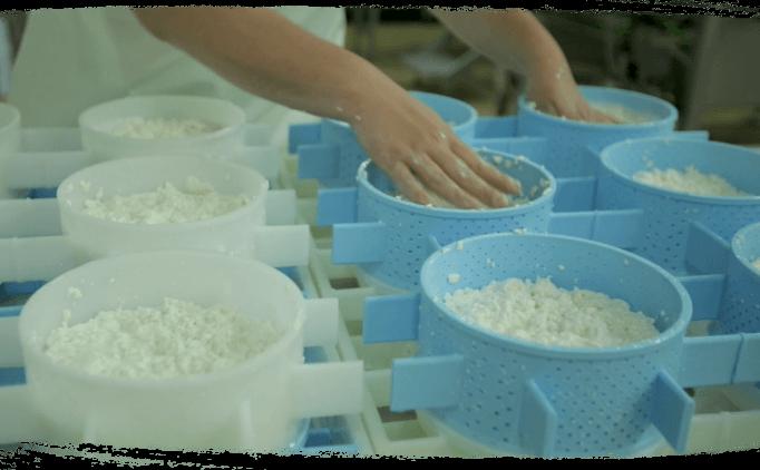 Moulage à la main fromage