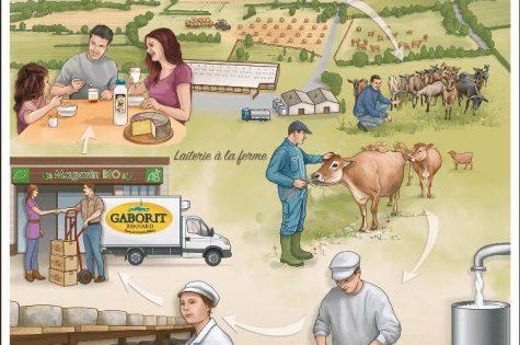 Schéma Ferme et laiterie bio