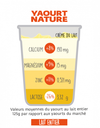 Bienfaits du yaourt bio
